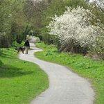 cuckoo_trail