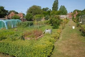 Garden 2 600