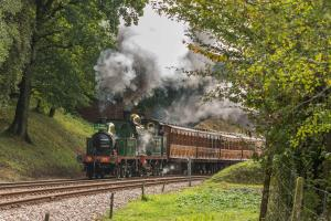 Around Pekes: Bluebell Railway