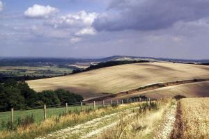 Around Pekes: The South Downs, East of Bignor Hill
